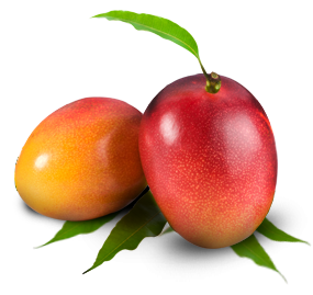 Variety of High Resolution Fruits PNG Pictures - Part 3