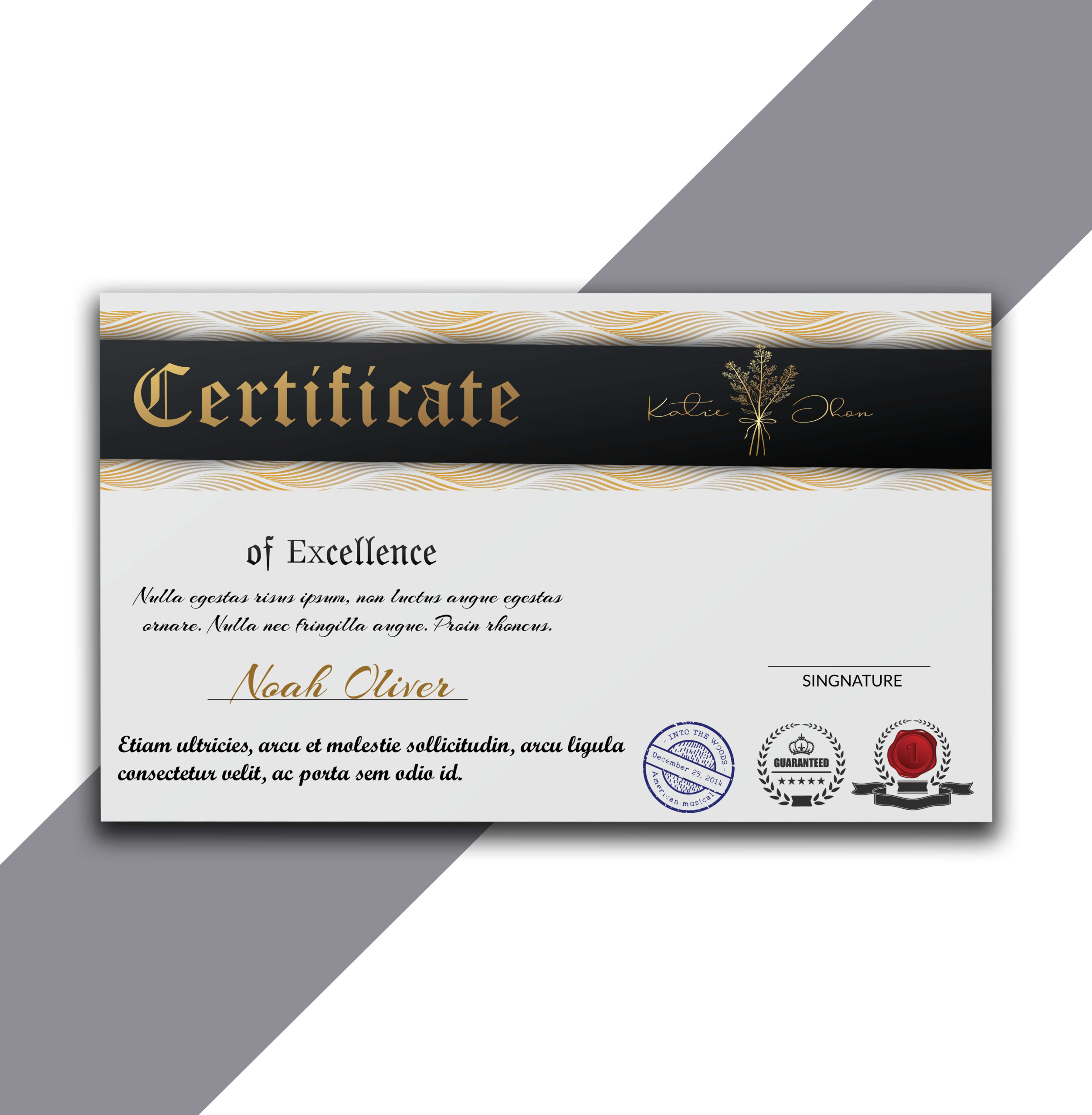 Simple Long Horizontal Certificate of Excellence