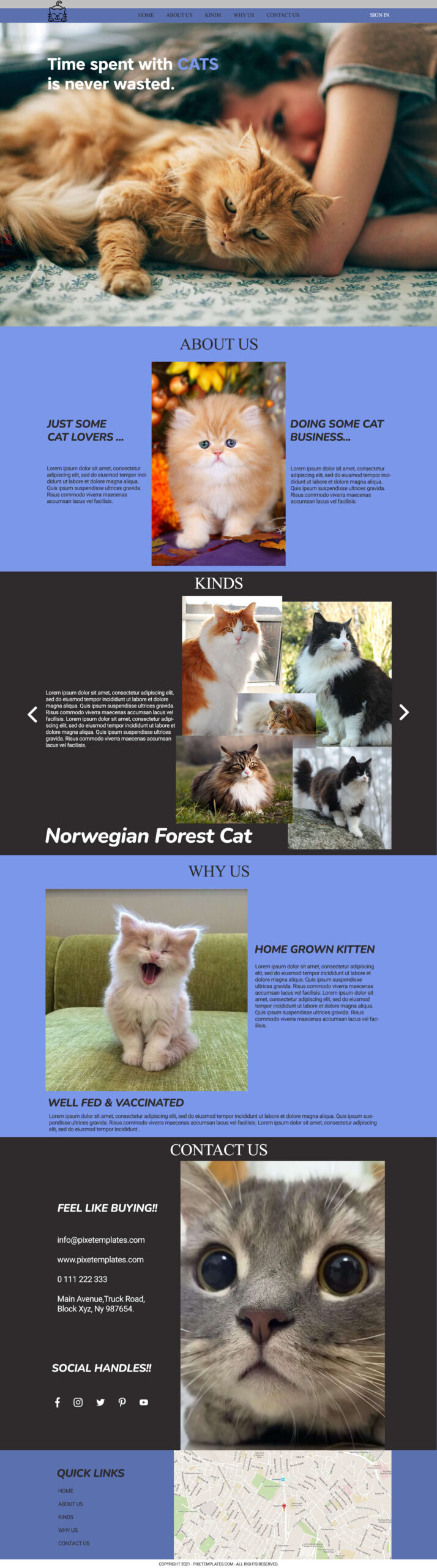 Free Website Template for Cat Owners in PSD Format